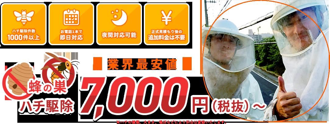蜂の巣・ハチ駆除「業界最安値」7,000円(税抜)〜※ハチの種類、大きさ、場所などにより料金は変動いたします。